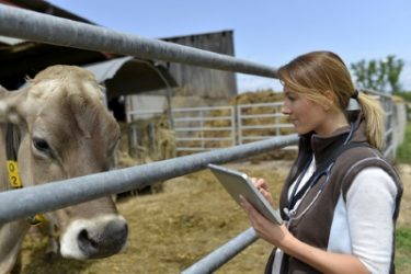 Early Detection Of Clinical And Sub-Clinical Mastitis