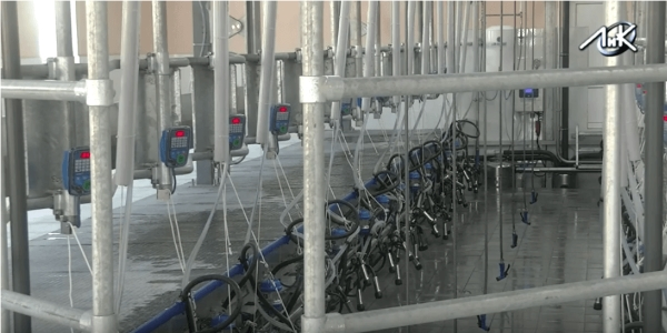 newly built milking parlor